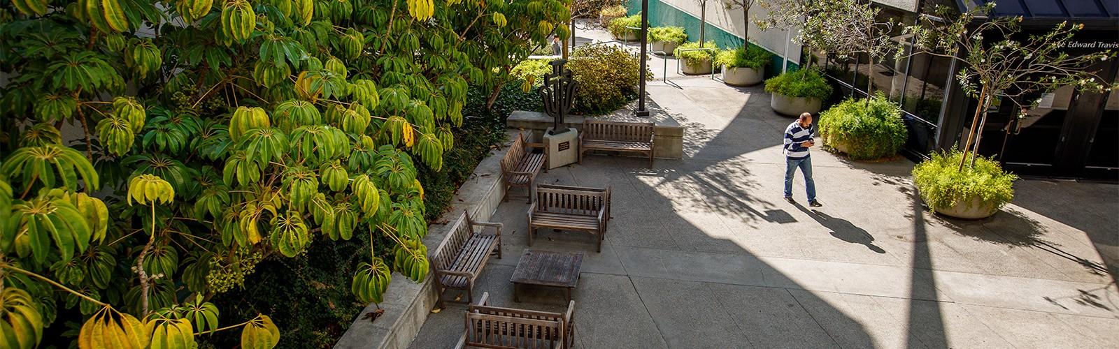 SOP Courtyard
