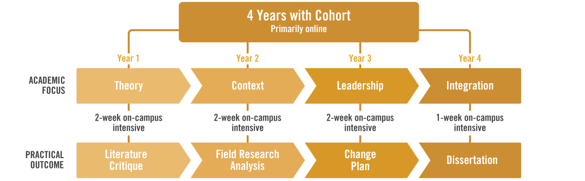 four year cohort plan